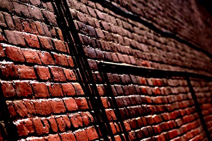 brick_tamland.jpg