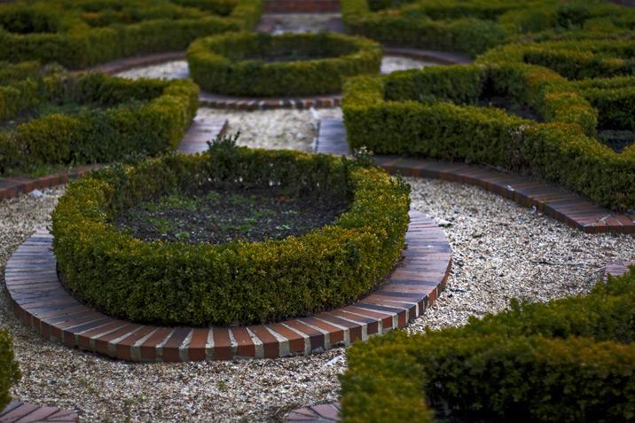 knot_garden_716.jpg