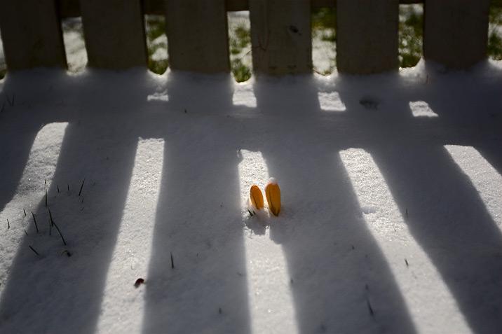 oops_snow.jpg