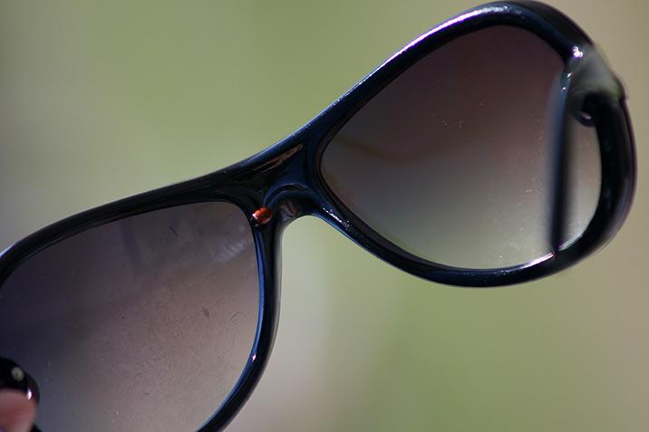 sunglasses_ladybug.jpg