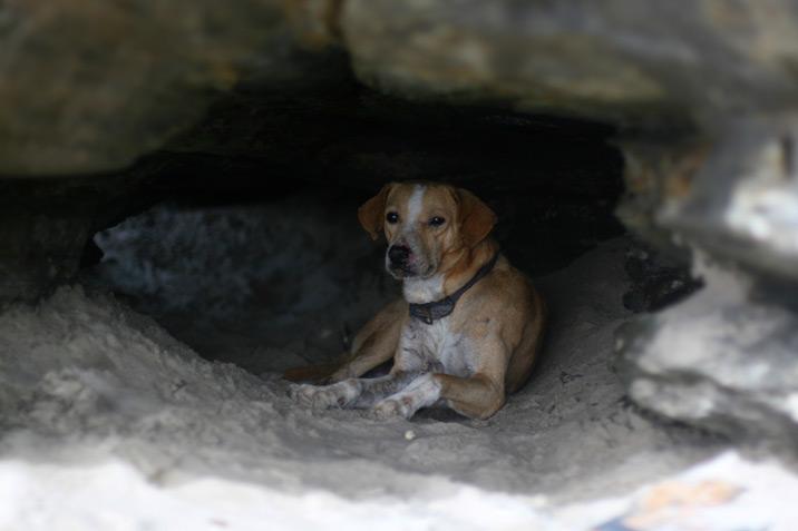 Las Cuevas, Trinidad