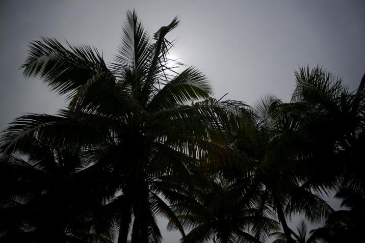Manzanilla Beach, Trinidad
